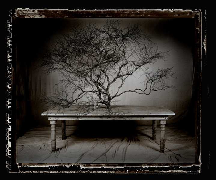 the-table-003-BLACK-BACKGROUND